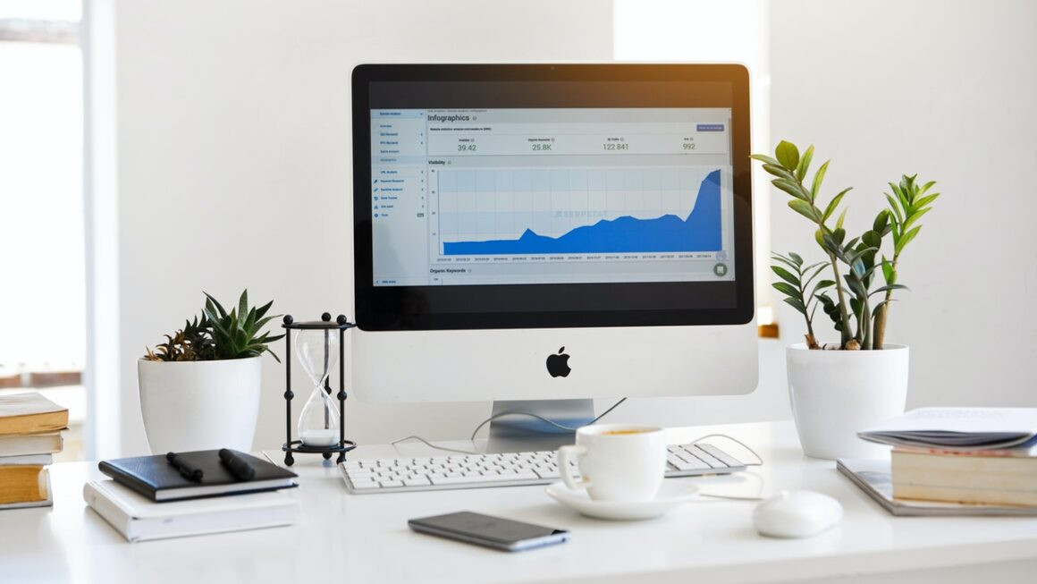 Effective ways business analytics can boost your business